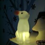 Nachtverlichting & hippe koeltasjes