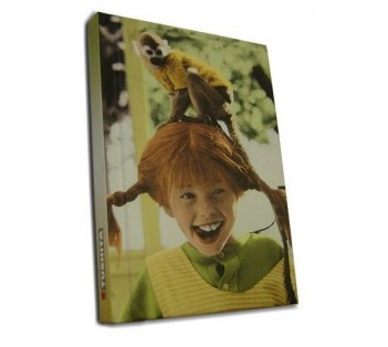 notitieboek pippi