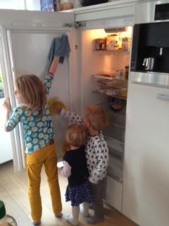 koelkast schoonmaken
