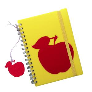 notitieboekje_geel_retro_appel