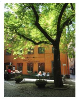 pleintje stockholm