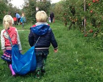appels plukken ikea tas