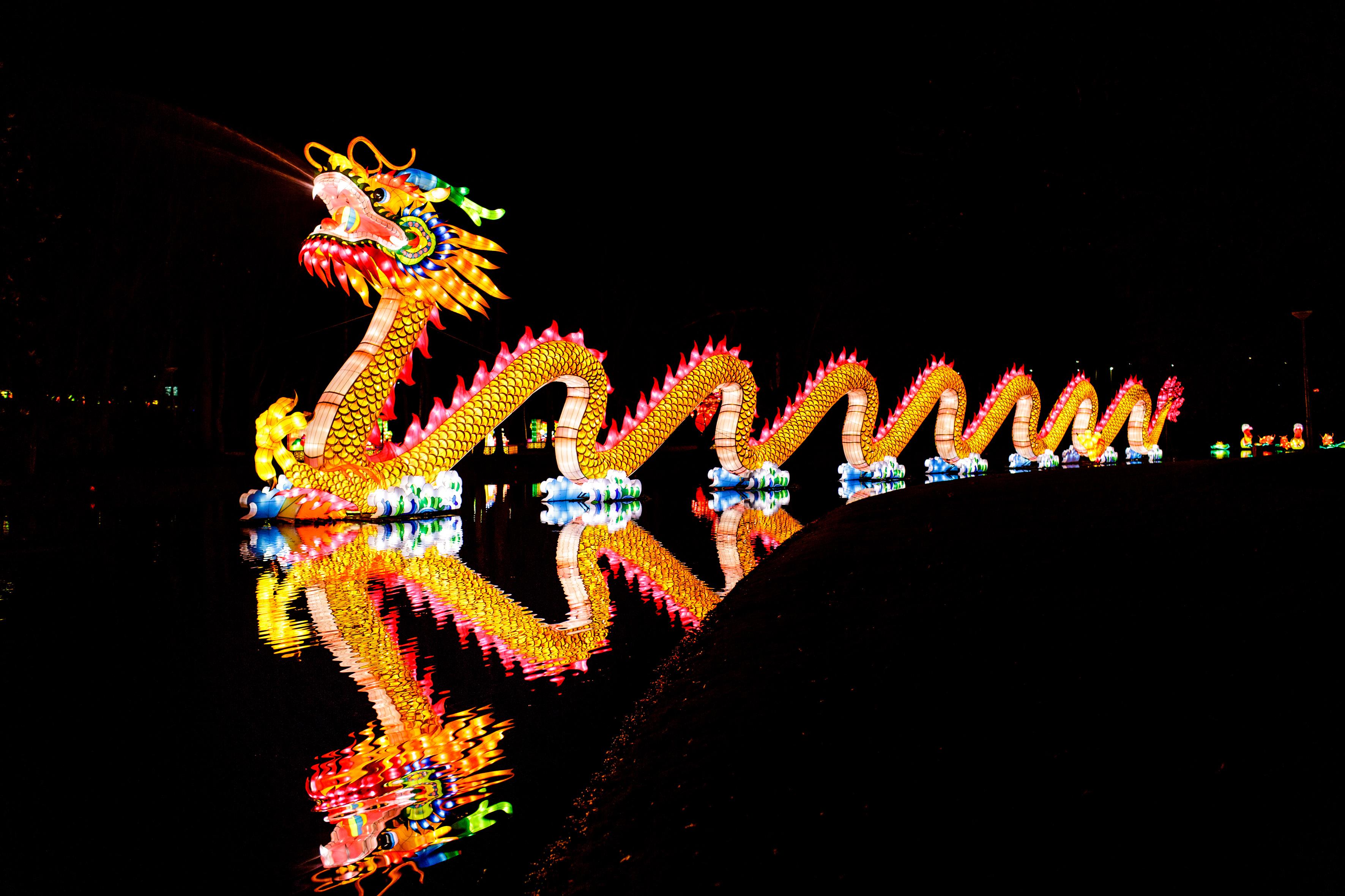 Lichtjes stralen... overal! 3 tips voor uitjes tijdens de kerstvakantie China Light festival foto Fred Ernst