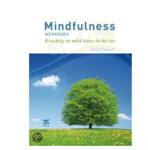 mindfullness werkboek