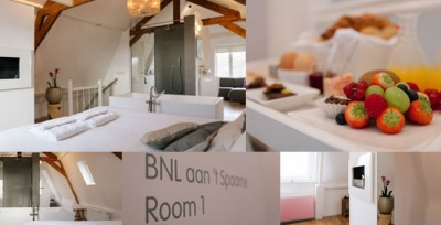 bnl-aan-t-spaarne-luxe-bed-&-breakfast