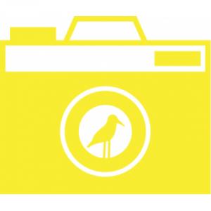 geel flockshop