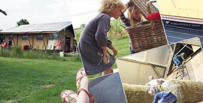 Farmcamps-mariekerke-lodgetent