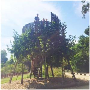 living tree botanische tuin