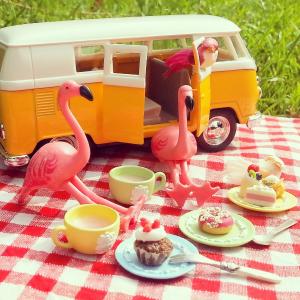 flamingoaday camping