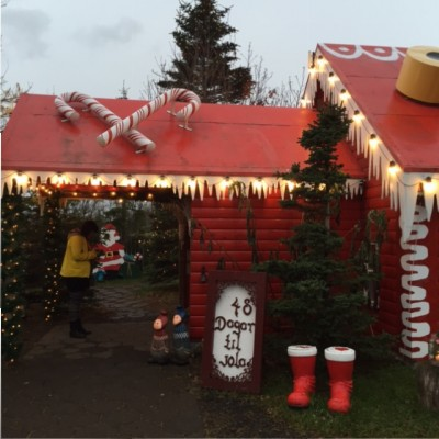 Christmas garden ijsland