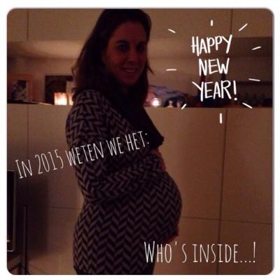 zwanger oudjaar 2014