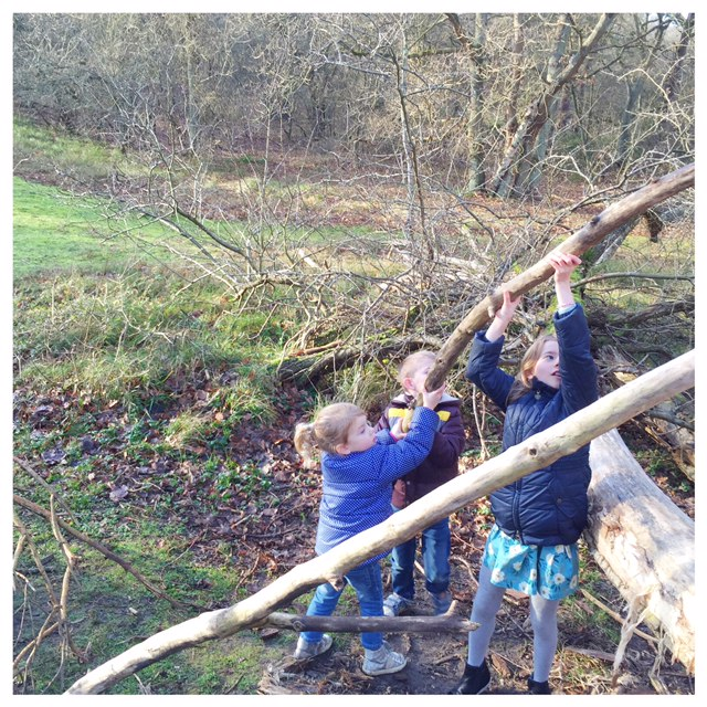 De leukste bossen van Nederland met kinderen outdoor avontuur met kinderen