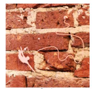 muursieraad sprong