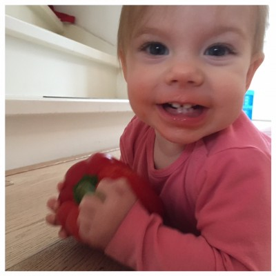paprika eten fee