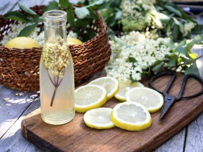 Elderflower juice and all the ingredients