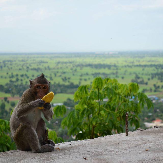 cambodja-instagram20