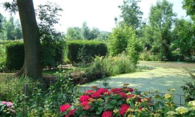 steinse tuin