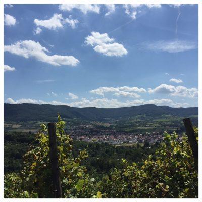 uitzicht metzingen Baden-Württemberg