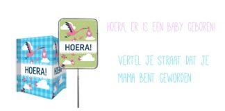 http://www.hipenhot.nl/originele-geboorteaankondiging-geboortebord-bedrukken/