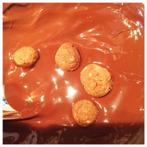 havermout-kruidnootjes-in-chocola