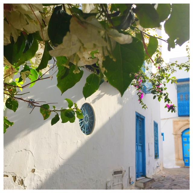 Op vakantie naar Tunesië bloemen sidi bou said