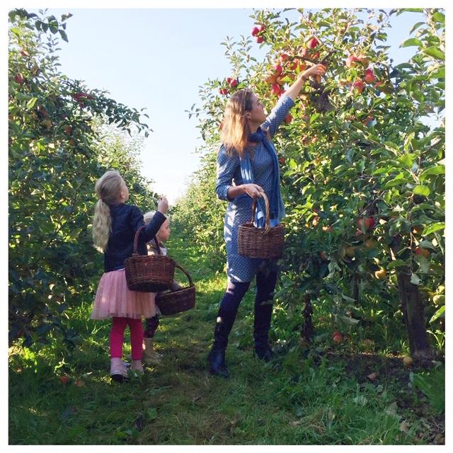 appels plukken 2018