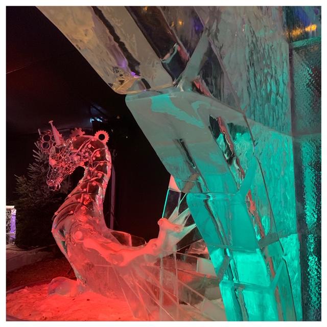 ijssculpturen wat te doen in de kerstvakantie