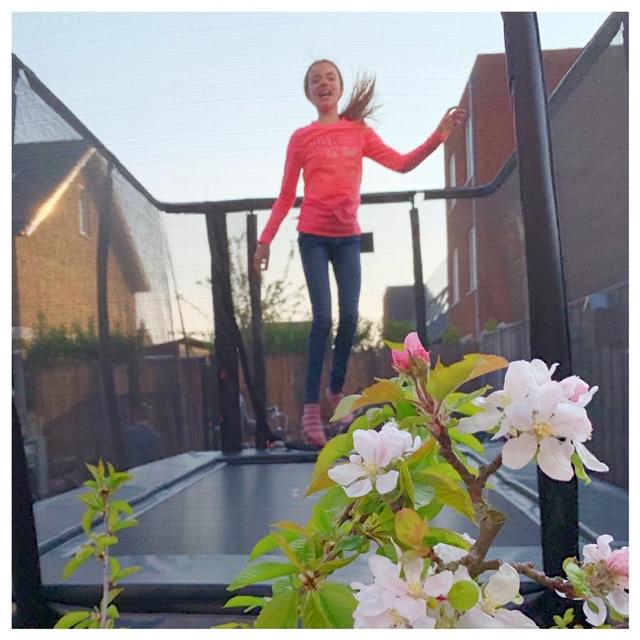 trampoline etan Sterre