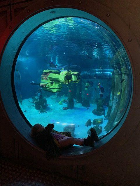 Korting voor Legoland Denemarken aquarium