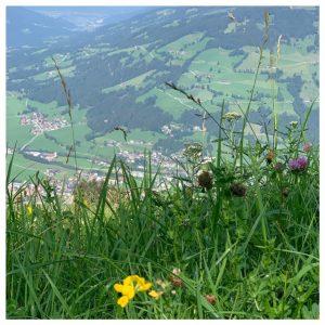 uitzicht westendorf