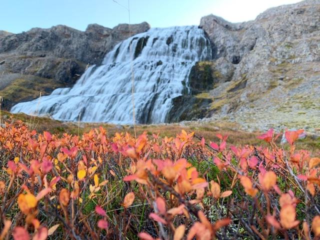 Dyjandi in de herfst ijsland westfjorden