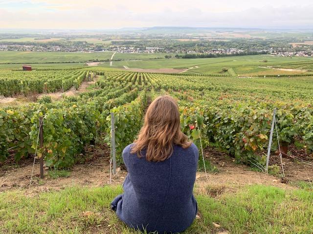 view winegrowers footpath