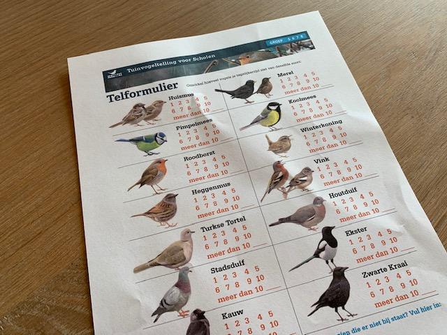 werkblad vogeltelling