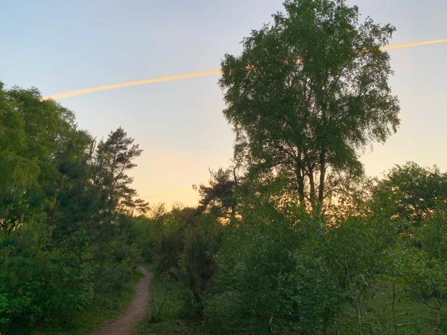 mooie avondlucht veluwse zoom