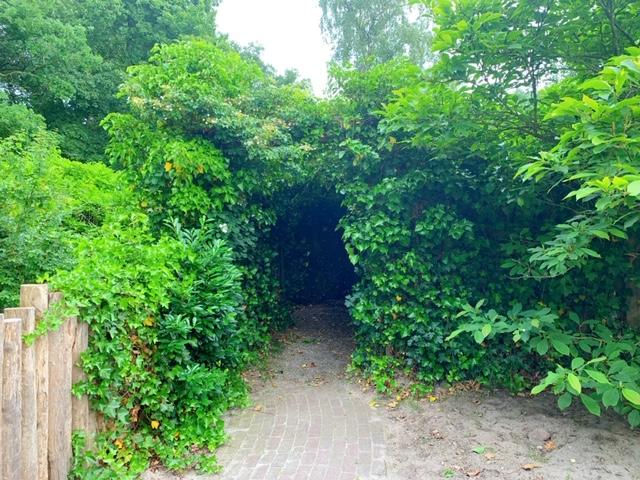 groen doolhof bakkeveen