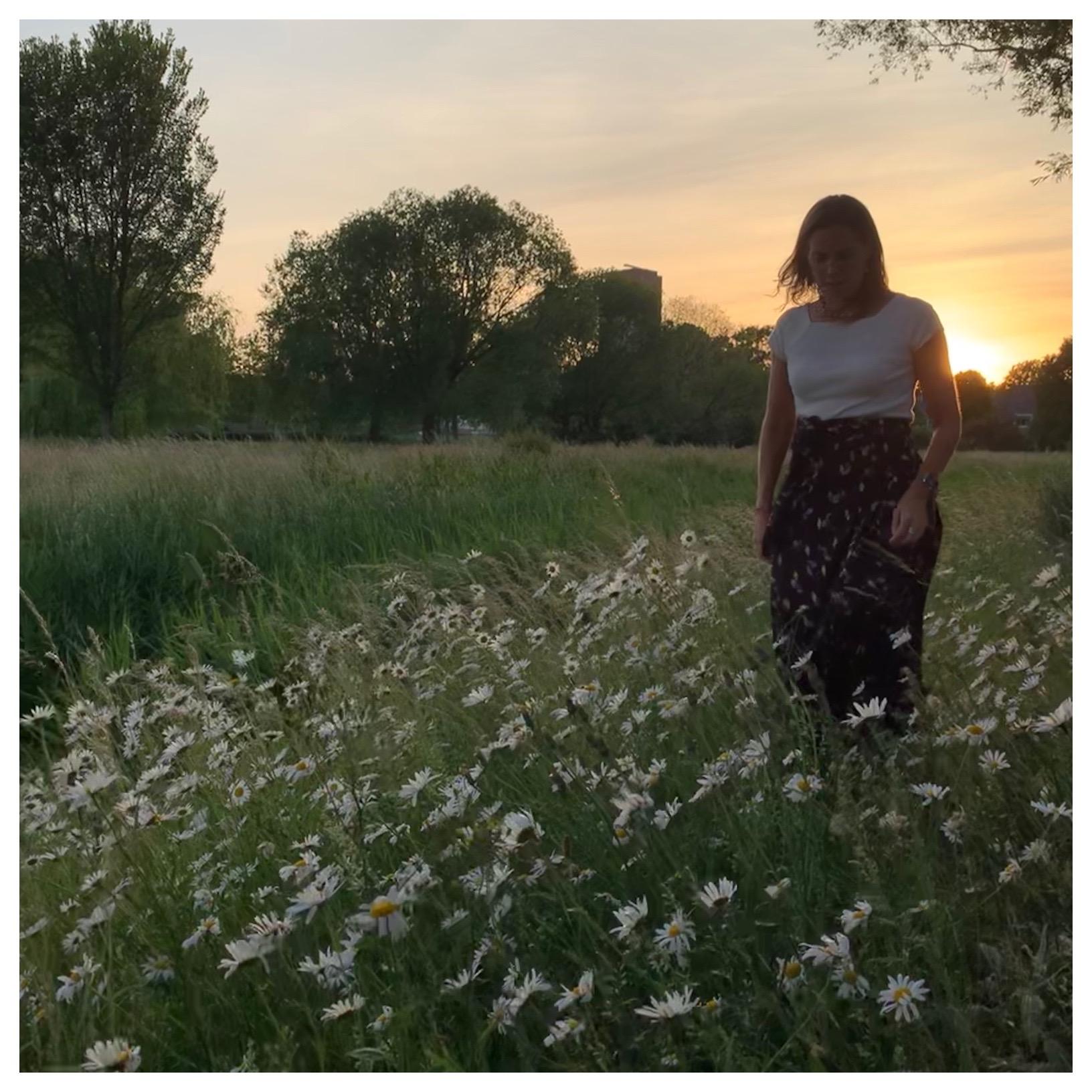 sunset wandeling door wilhelminapark