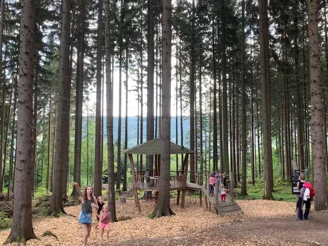 bos bij prachatice