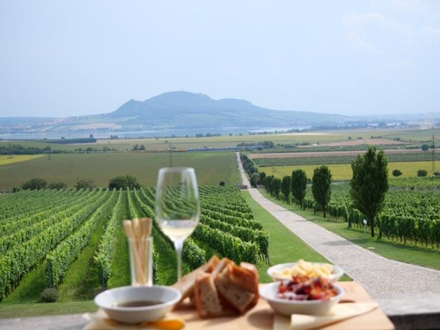 sonberk uitzicht en wijn en food