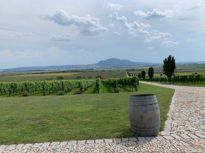uitzicht wijnhuis sonberk