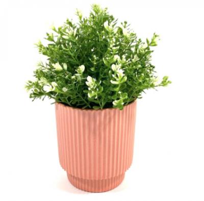 plantje in roze plantenpot