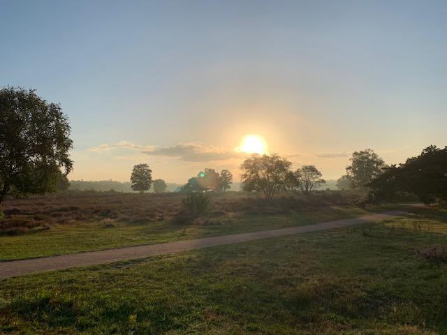 sunrise hoorneboegse heide