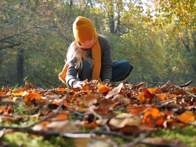 Lenthe herfstbladeren