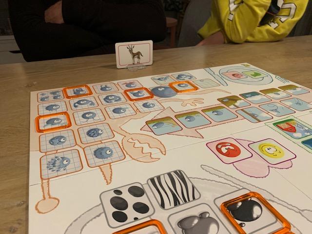 concept kids dieren spel
