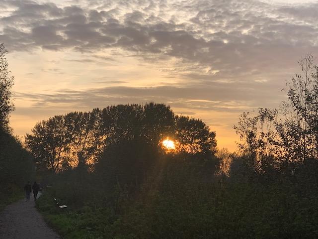 ondergaande zon wilhelminapark nov 2020