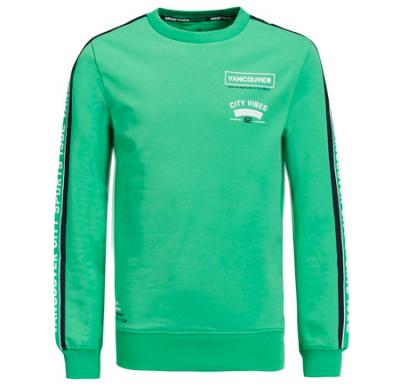 Sweater groene we