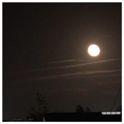 volle maan nov 2020