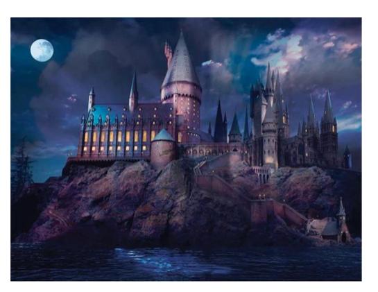 Harry Potter puzzels