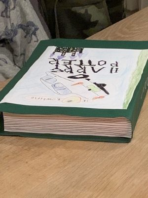harry potter boek surprise