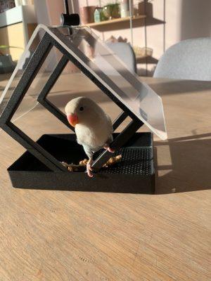 pip in vogelhuisje
