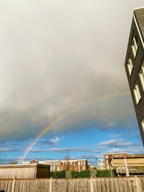 rainbow jan 2021